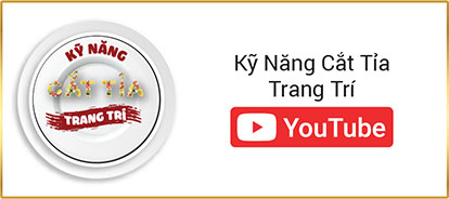 Kênh youtube ki nang cat tia